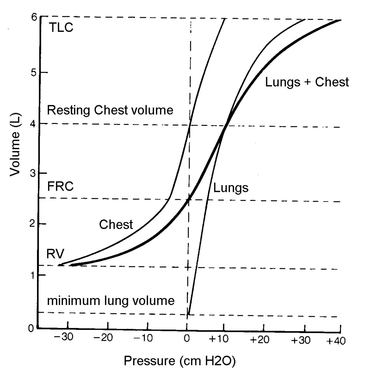 lung-compliance-and-elastance