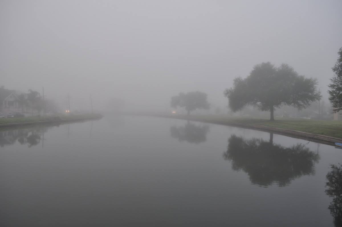 The banks of Bayou St John on a foggy morning.