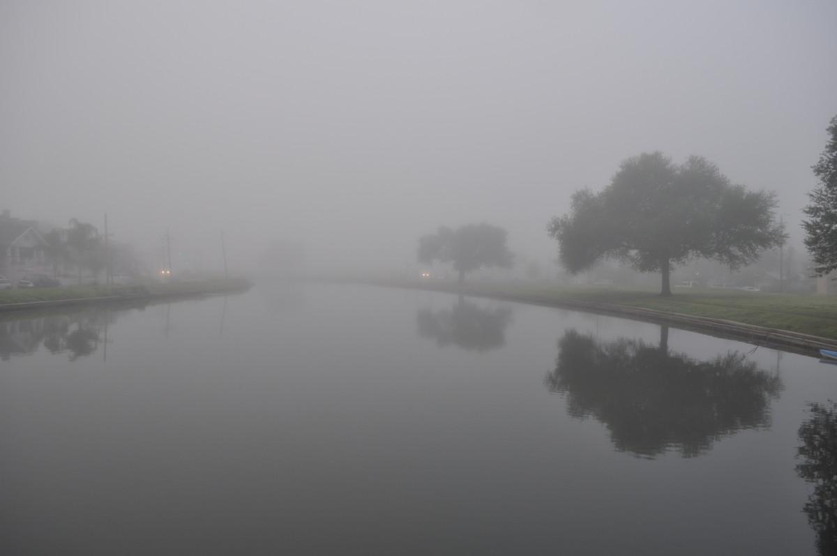 The banks of Bayou St John on a foggy morning.