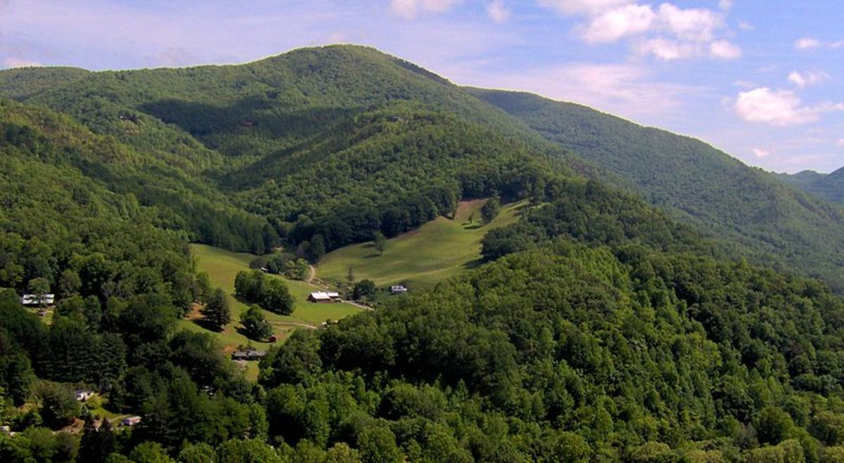 The south slope of the Cataloochee Divide in the Great Smoky Mountains in North Carolina.