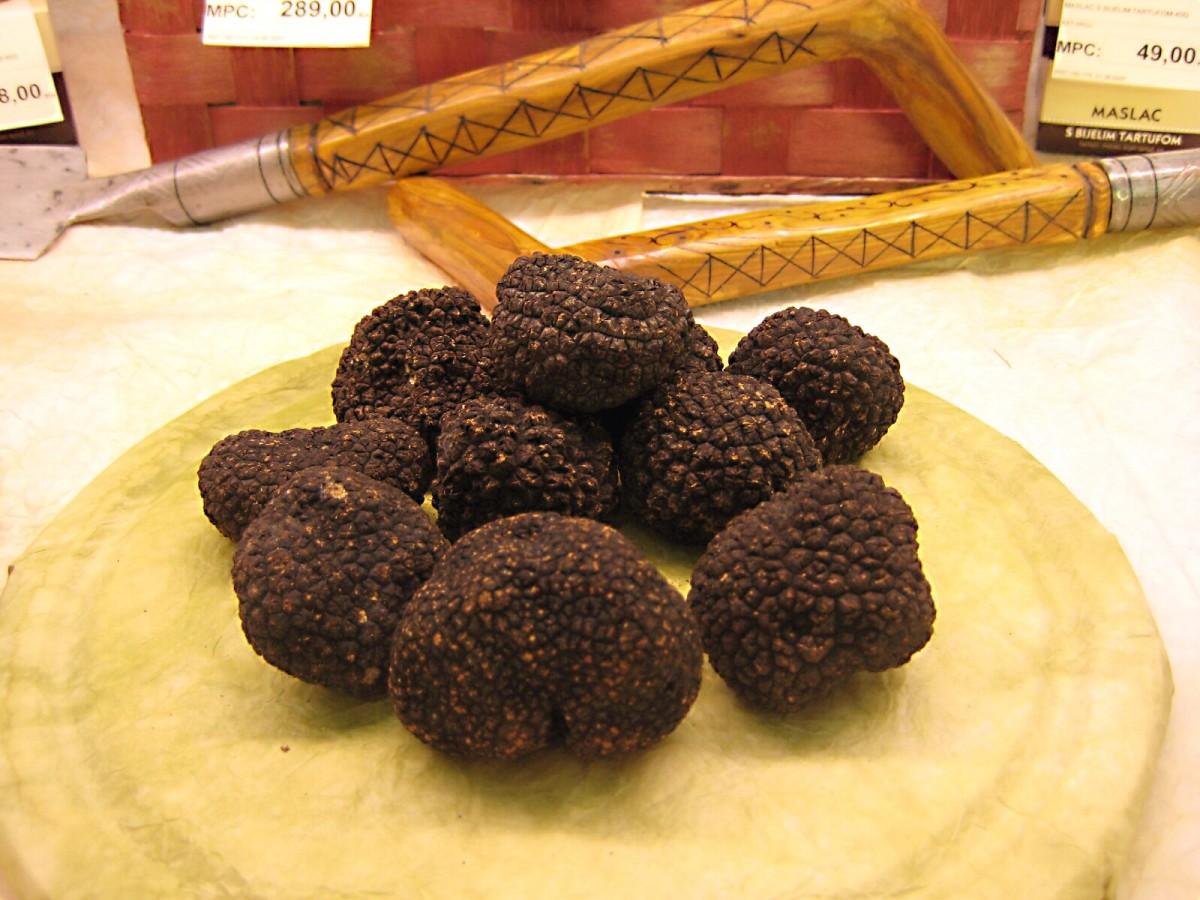 Black truffles from Croatia