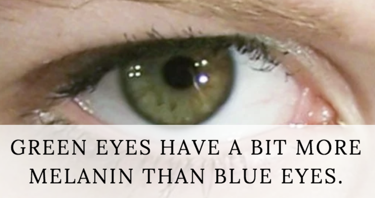 Meaning of eyes the hazel Here's What