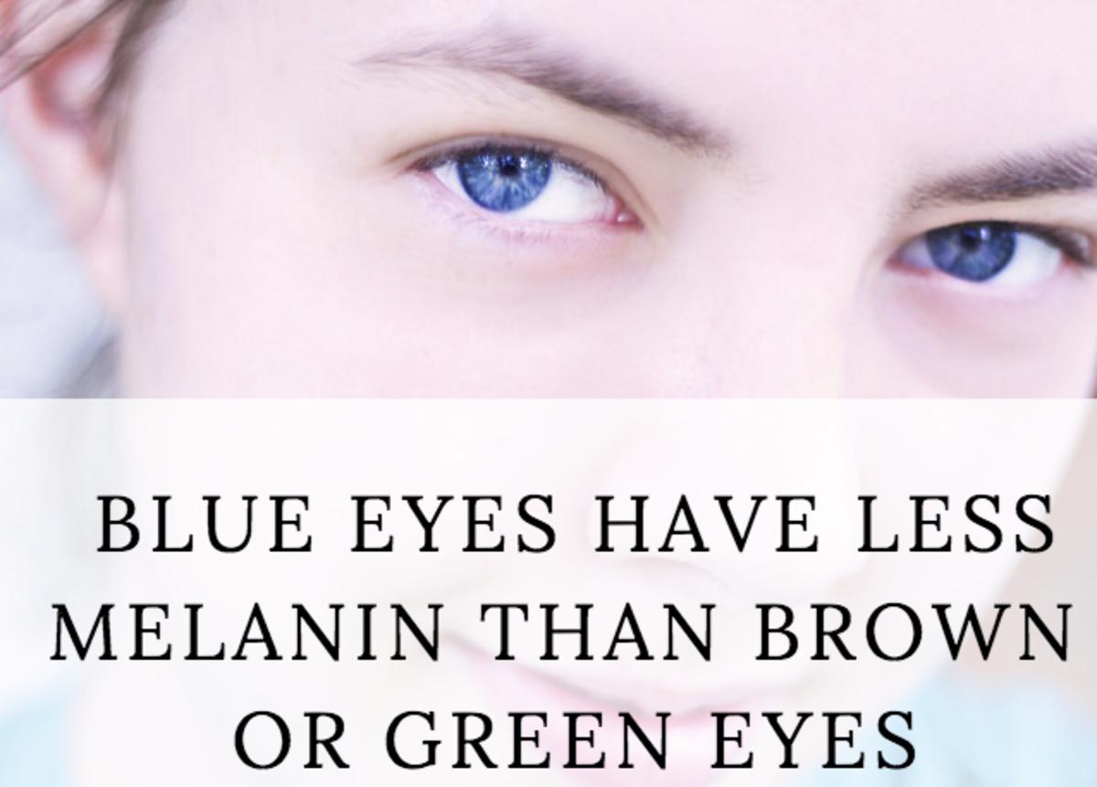 Blue eyes have very little melanin.