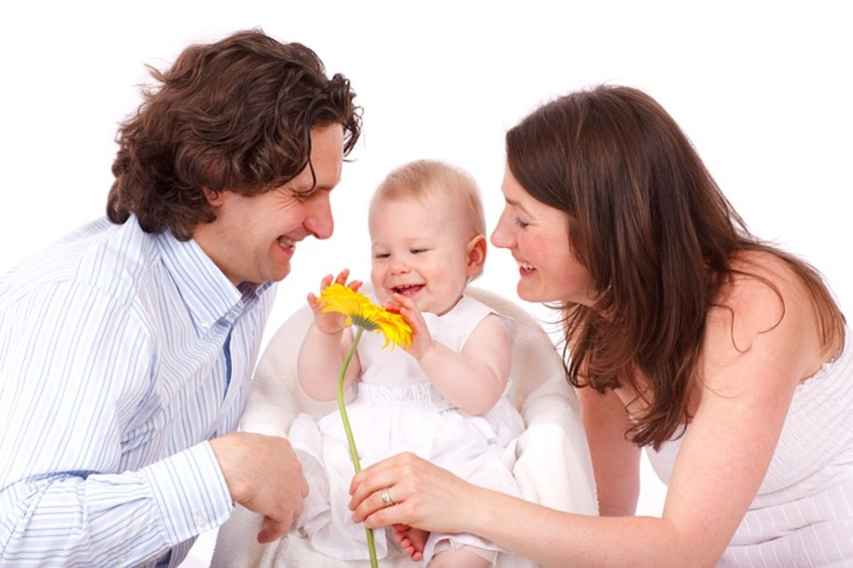 Why are some families happier than others?