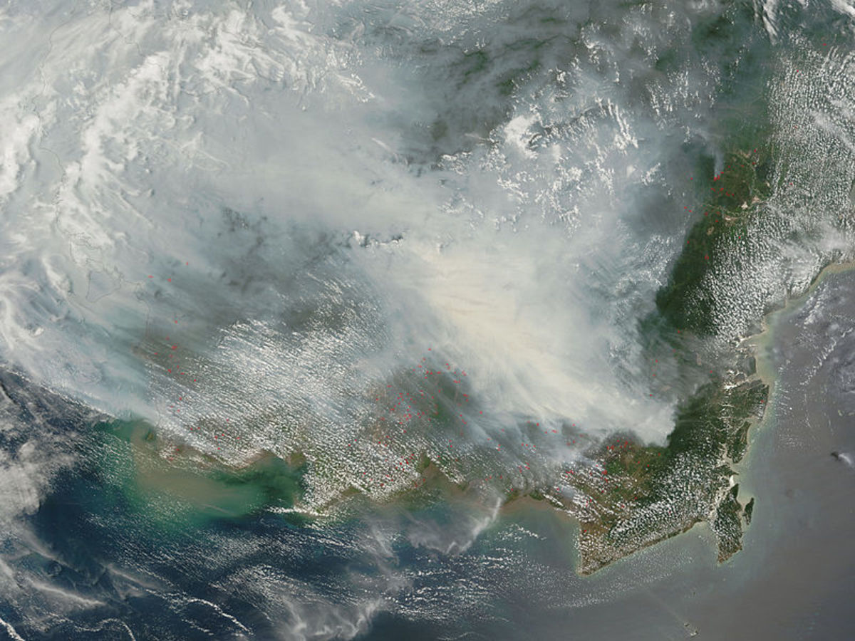 Borneo fires, October 2006.  Image by Jeff Schmaltz and NASA, provided courtesy of Wikimedia Commons.