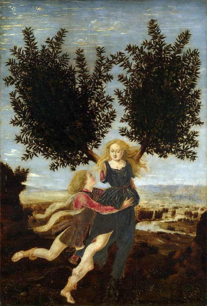 Daphne's metamorphoses by Antonio del Pollaiolo