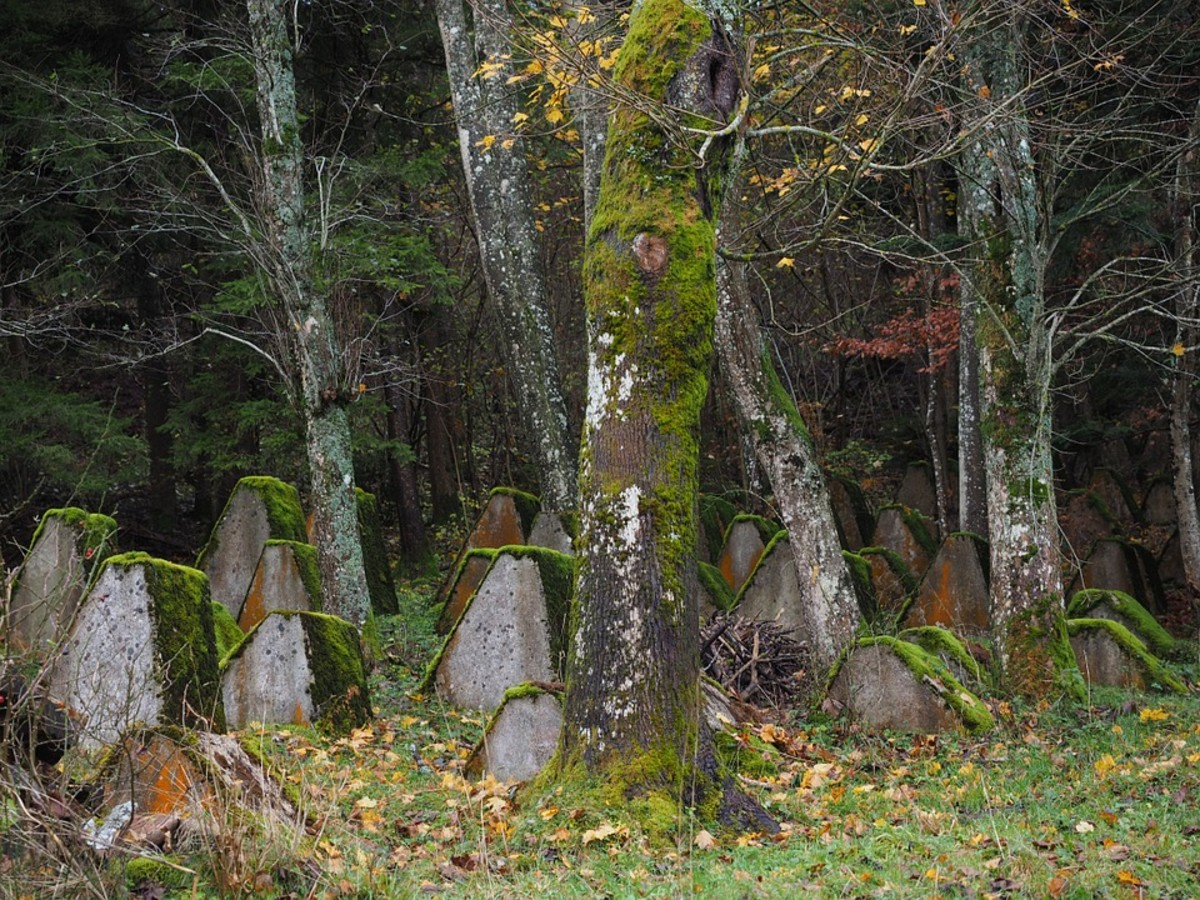 Old graves long forgotten