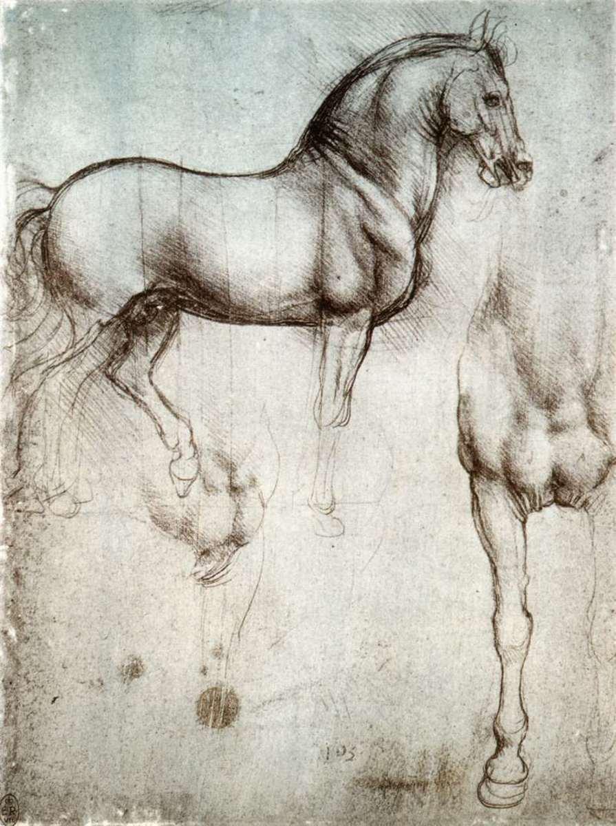 Leonardo's sketch of a horse