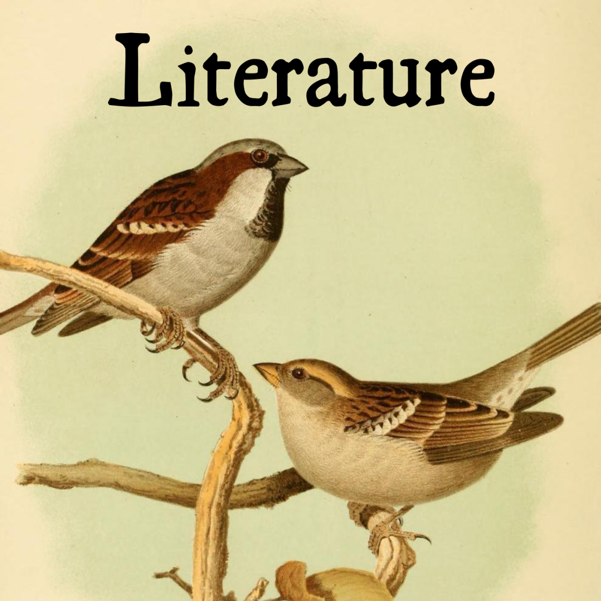 Sparrows have appeared in literature for centuries across a variety of genres.