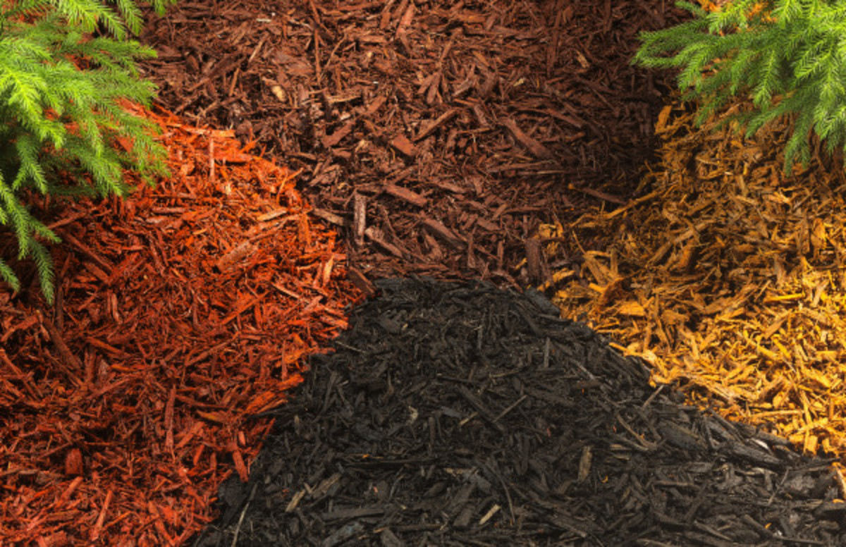 Choosing the kind of mulch that's right for you is critical when setting up and maintaining your garden.