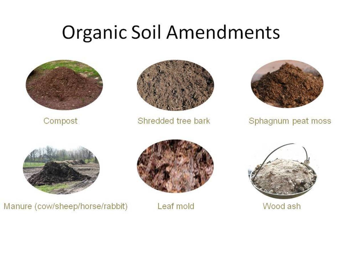 Organic fertilizers release their nutrients gradually over many months, so apply them in the fall to ensure they'll be available to your plants next spring.