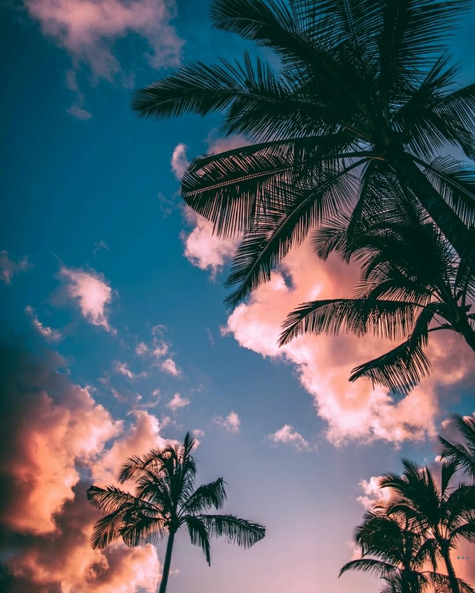 heavens-call