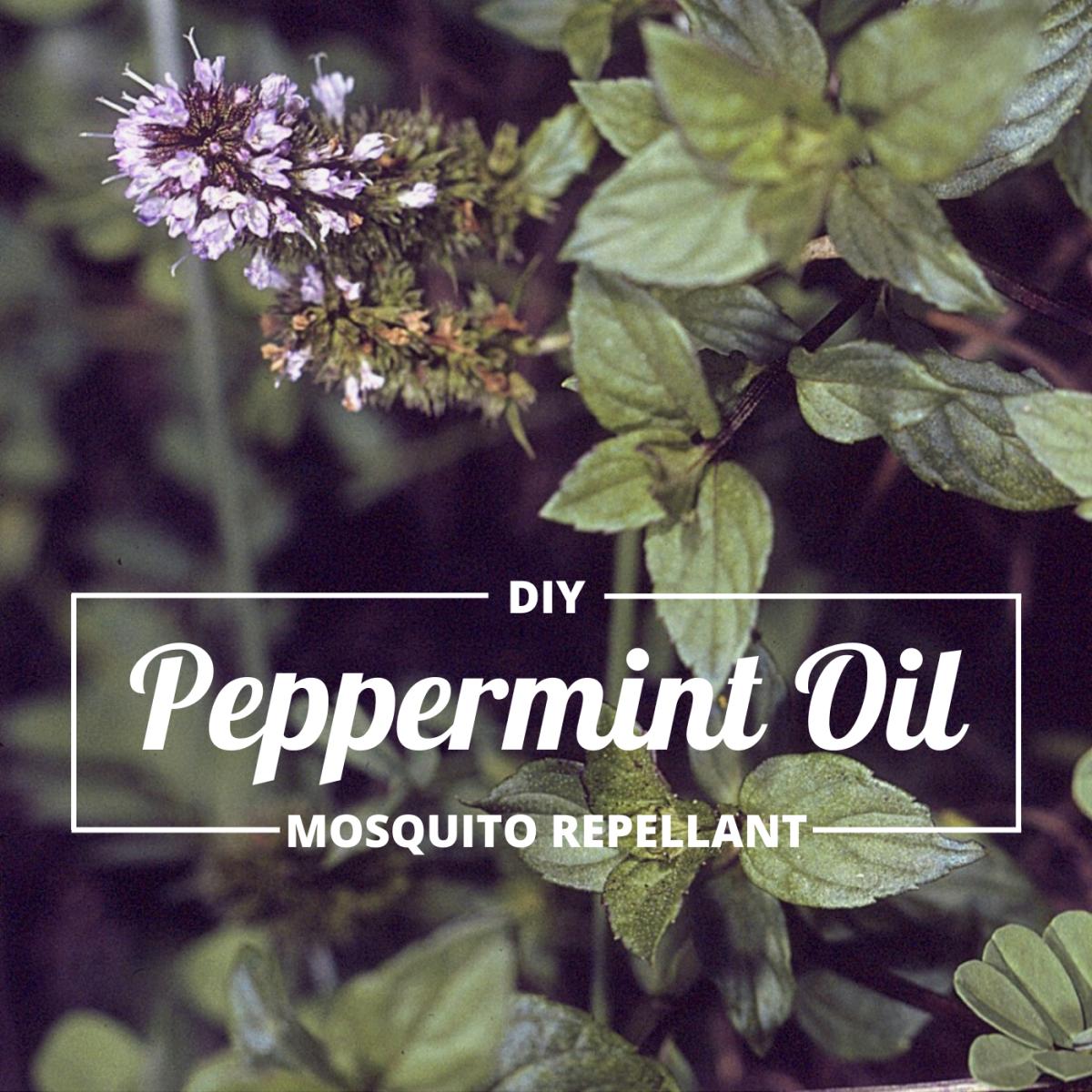 My Favorite Mosquito Repellent: Peppermint Essential Oil