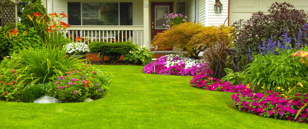 When you look at a yard as beautiful as this one, remember that it started with one thing: good soil.