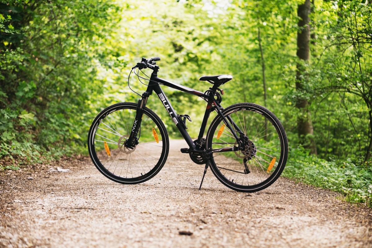 velocipede-verses-12-bike-for-sale