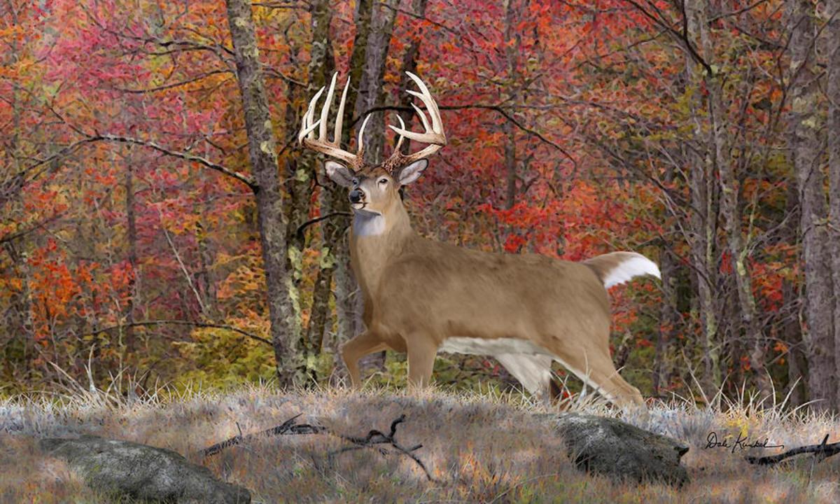 My Memories: Deer Hunter