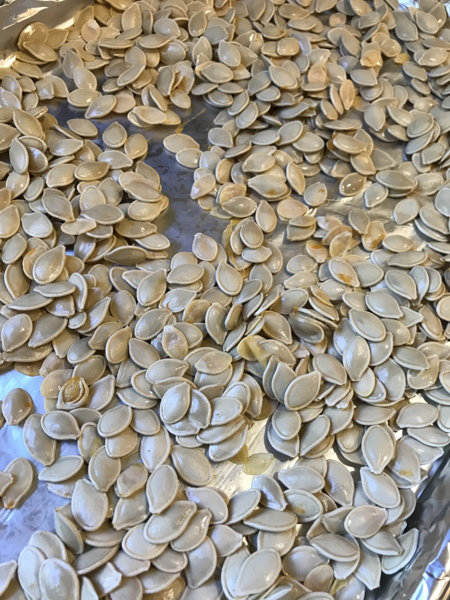One of the tricks to getting crunchy seeds is to make sure the pumpkin seeds are nice and dry before going into the oven. I like to wash them, then spread them out on a baking sheet. Stir occasionally, and they'll dry out nicely. Or just pat dry.
