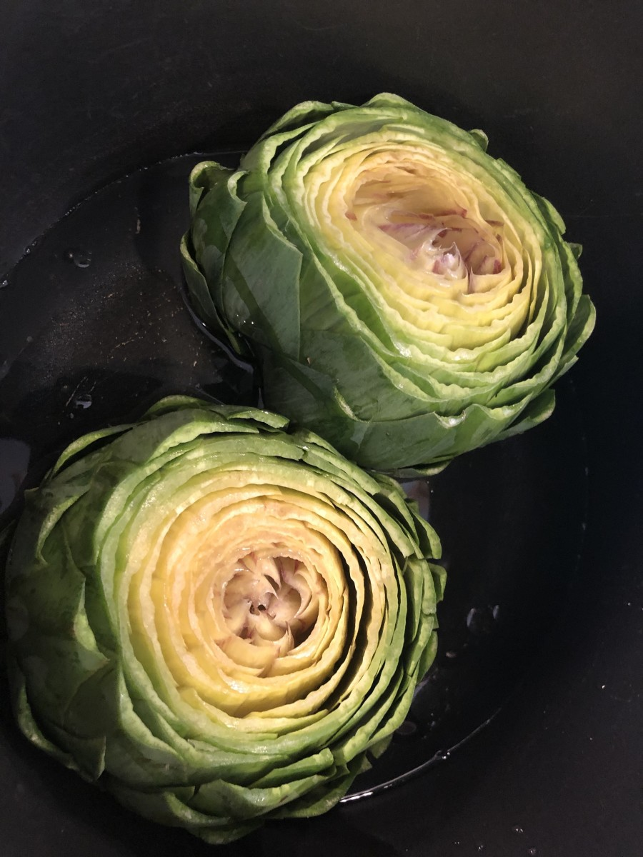Raw artichoke, top and pointy ends trimmed and ready to be cooked