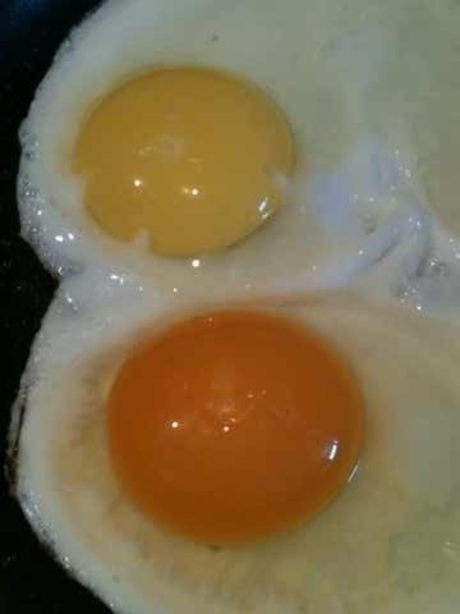 The egg on the top is a conventional egg. The one on the bottom is a pastured egg. Notice the deep colored yolk!