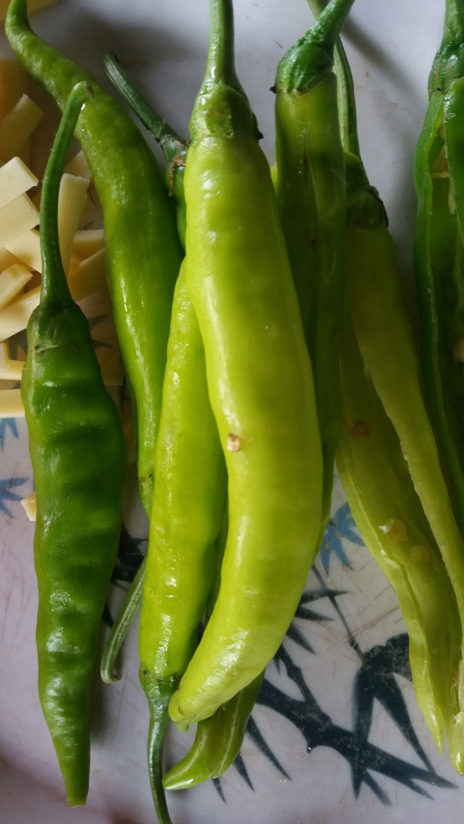 long green chilies for dynamite