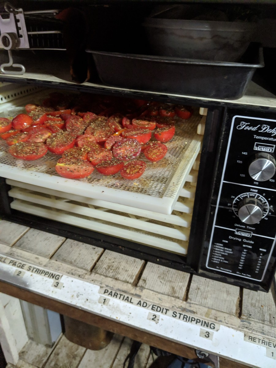 Place the trays in the dehydrator.
