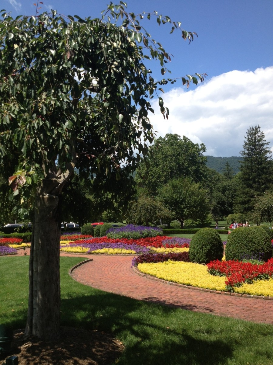 Loved the gardens at the Greenbrier in West Virginia.  Lovely examples of Victorian Gardens.