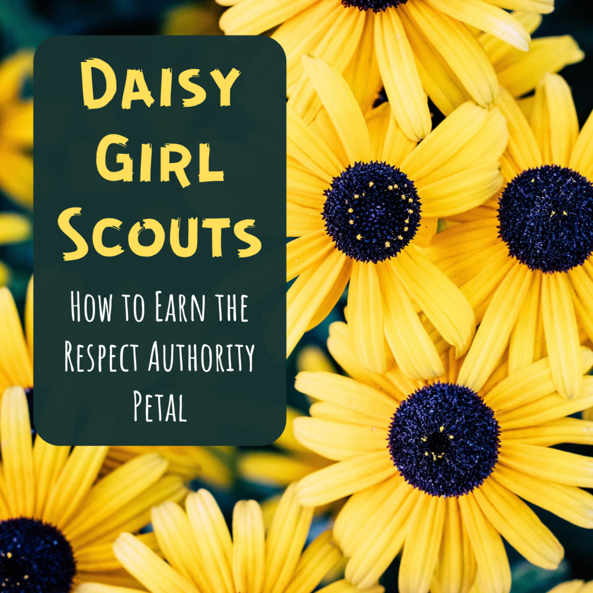 Learn more about Daisy petals, and get ideas for how your troop can earn the magenta petal for respecting authority.
