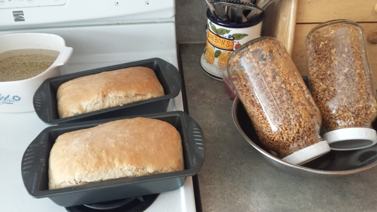 Soaking wheat berries and baking my own bread.