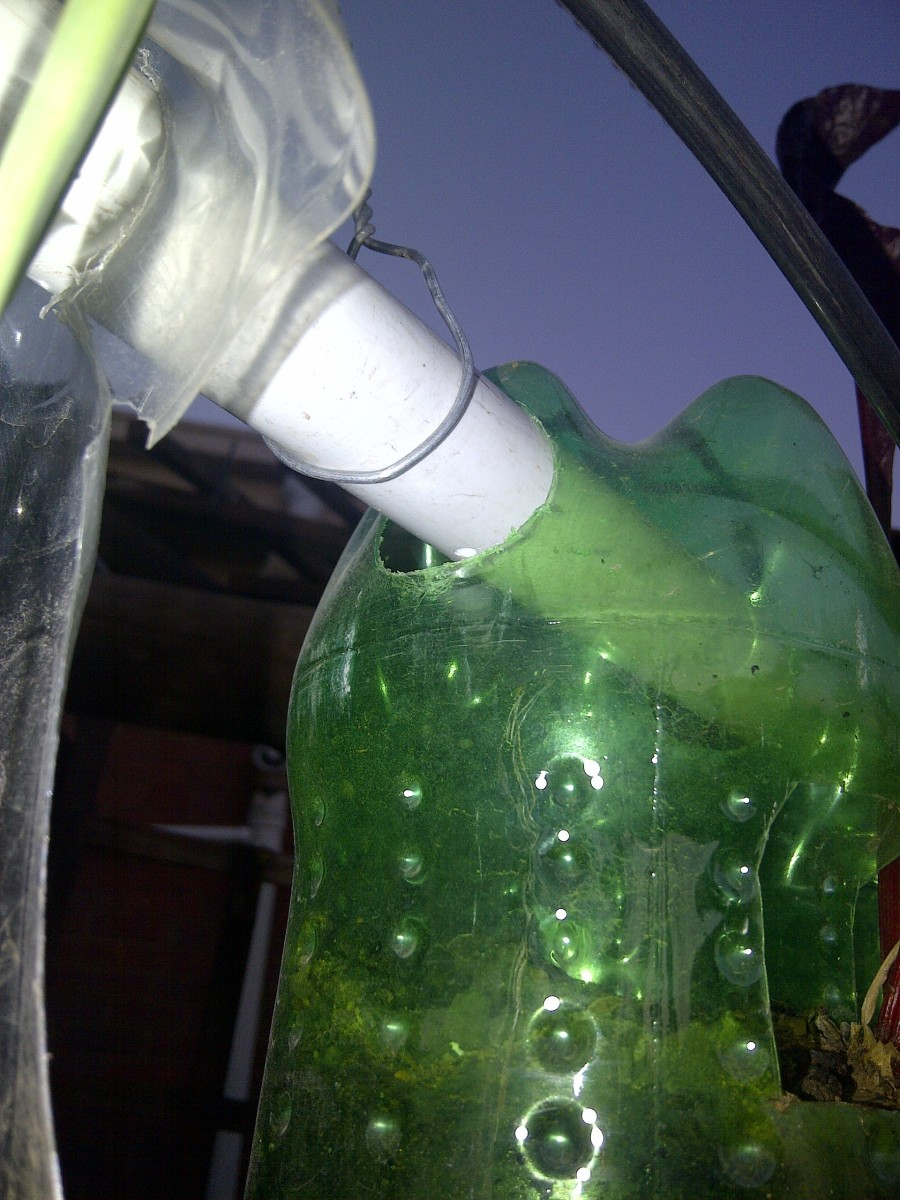 Horizontal holes drilled through the bottle
