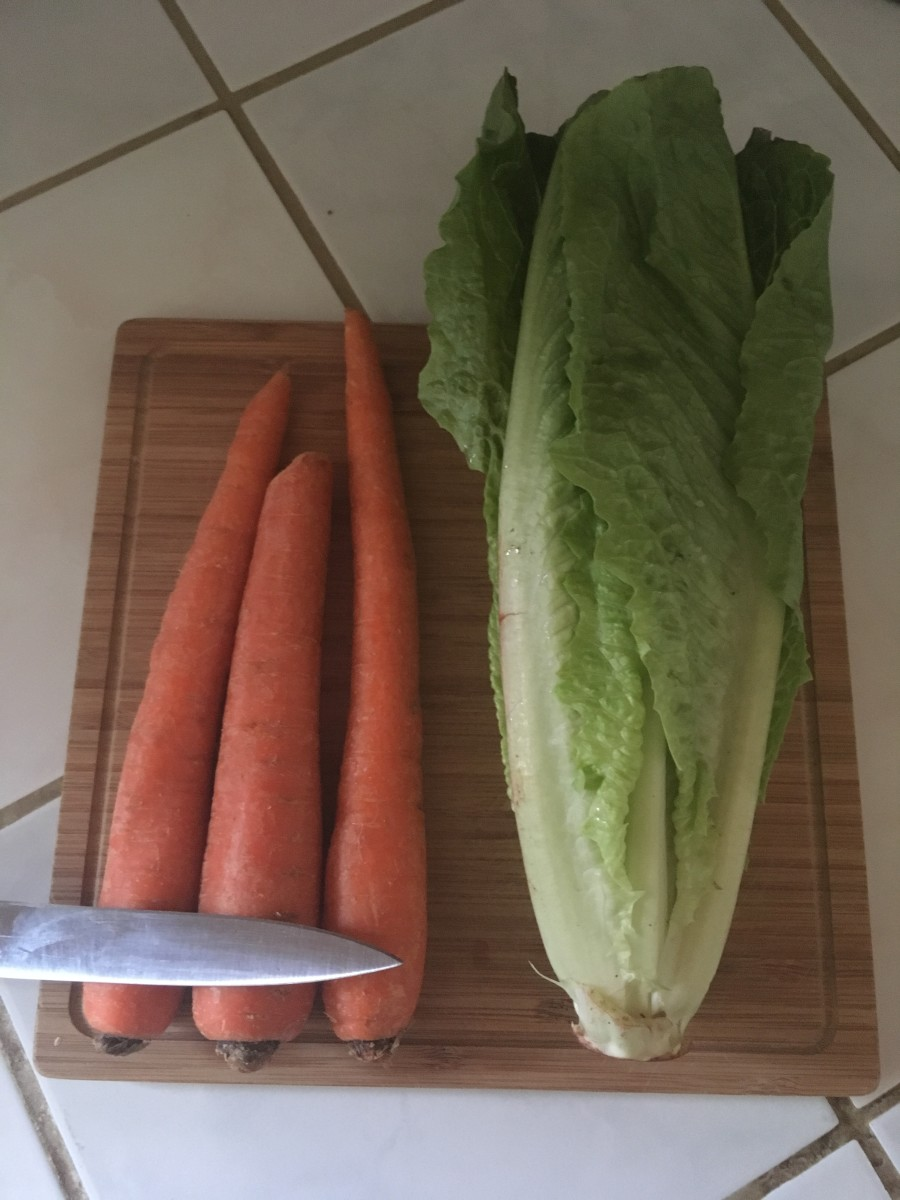 Cut carrots and lettuce where you see the front edge of the knife. Remove outer edge of lettuce. New leaves grow from the middle.