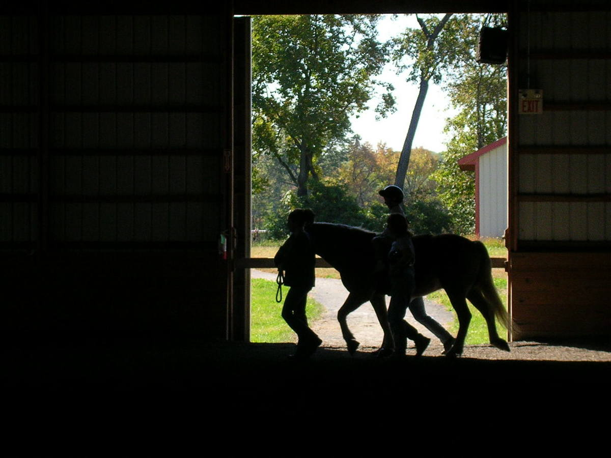 Horse and Rider are Led Outside.