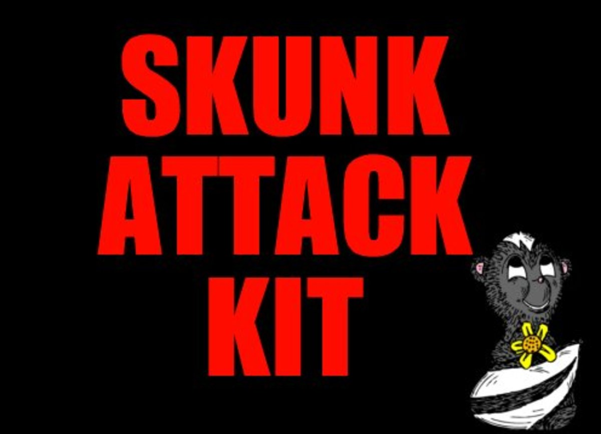 Have your skunk attack kit ready!
