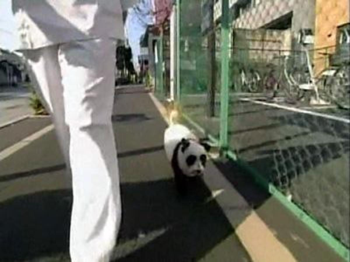 Columbo going for a walk through Tokyo.