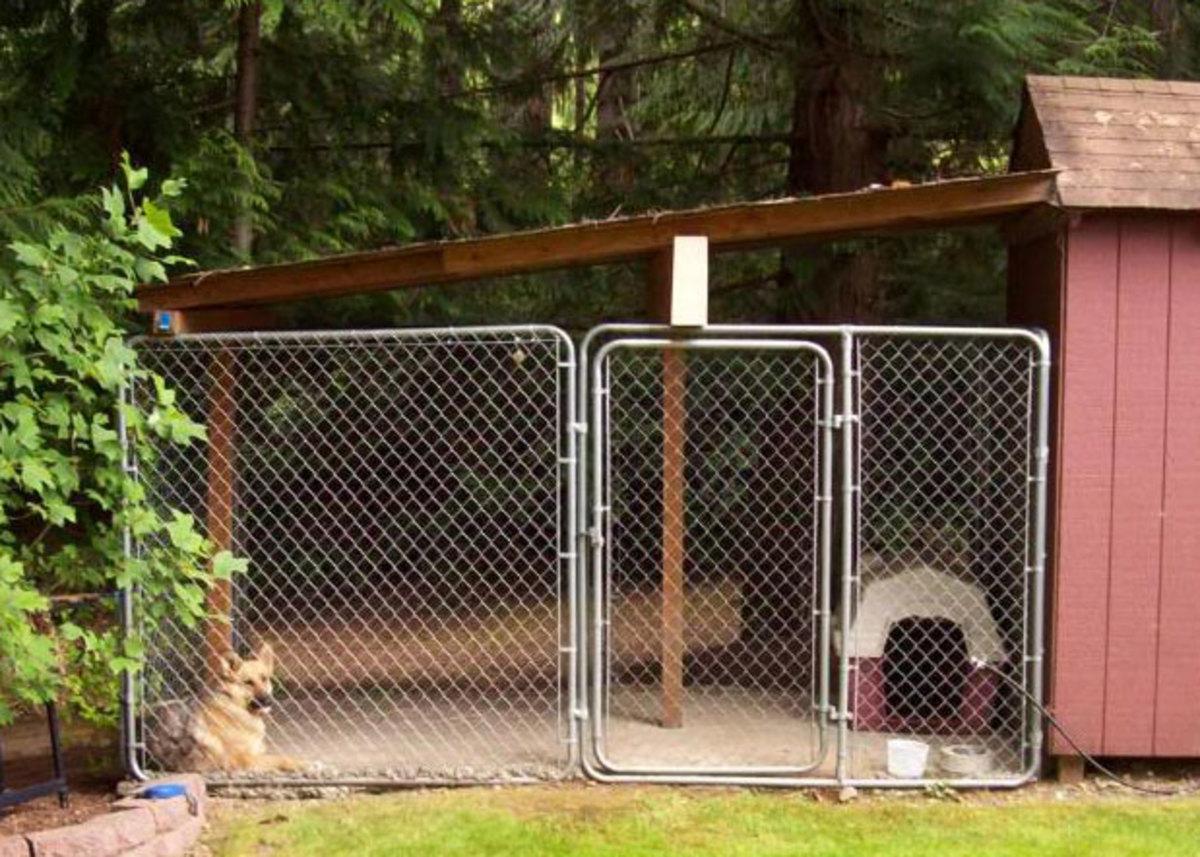 Backyard dog run with slanted roof.