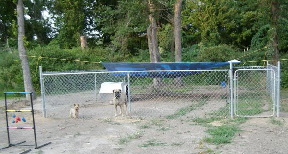 A backyard dog run complete with make-shift sunroof and dog house.