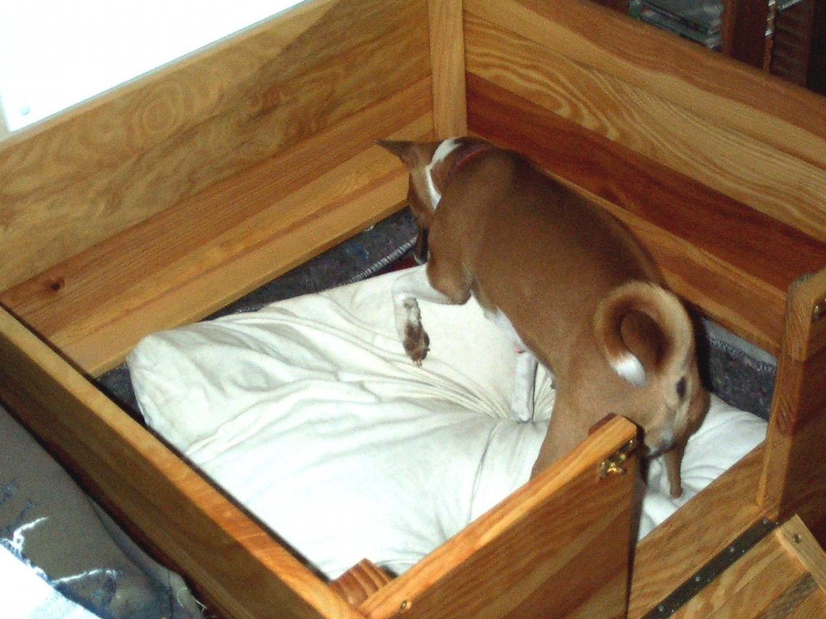 This small whelping box is outfitted with fabric and a cushion so that the dog and her pups can be as comfortable as possible during and after the birthing process.