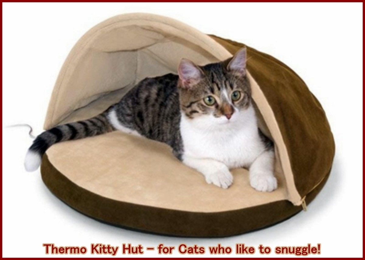 Picture of: Recommended Heated Cat Beds Indoor Outdoor And Alternatives Pethelpful By Fellow Animal Lovers And Experts