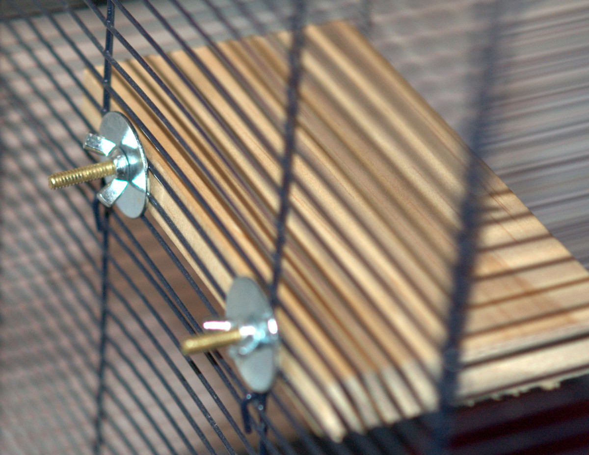 Ledge attached to the cage