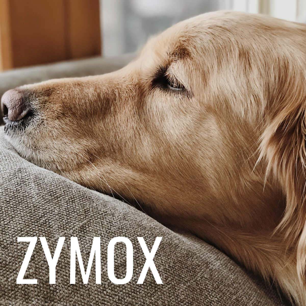 Zymox is made for acute and chronic inflammation of the external ear.