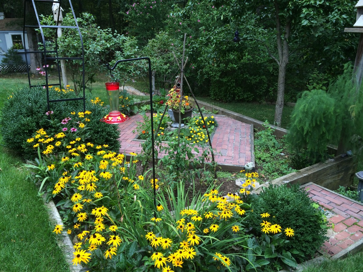 Our gardens feature feeders and flowers
