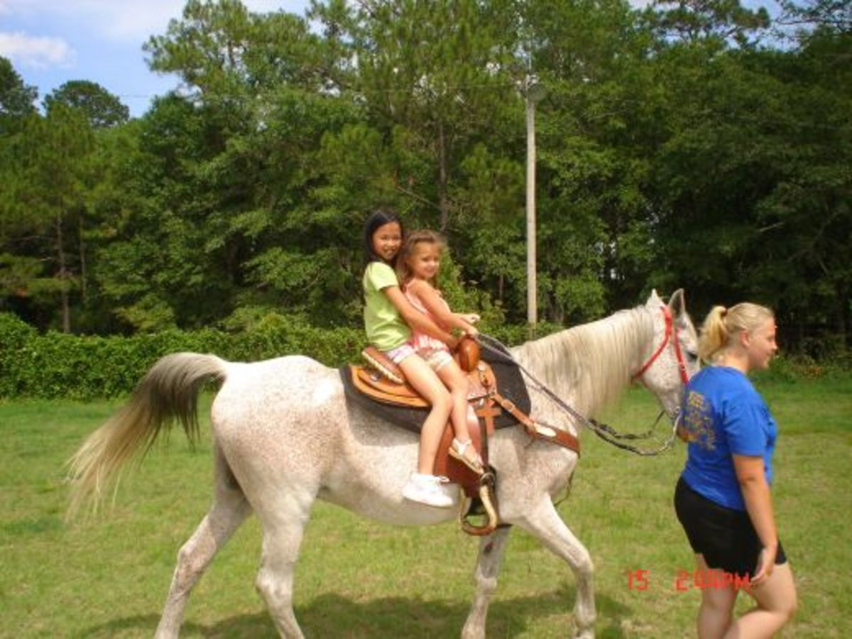 My granddaughter (front) and niece on a gentle old Arabian.