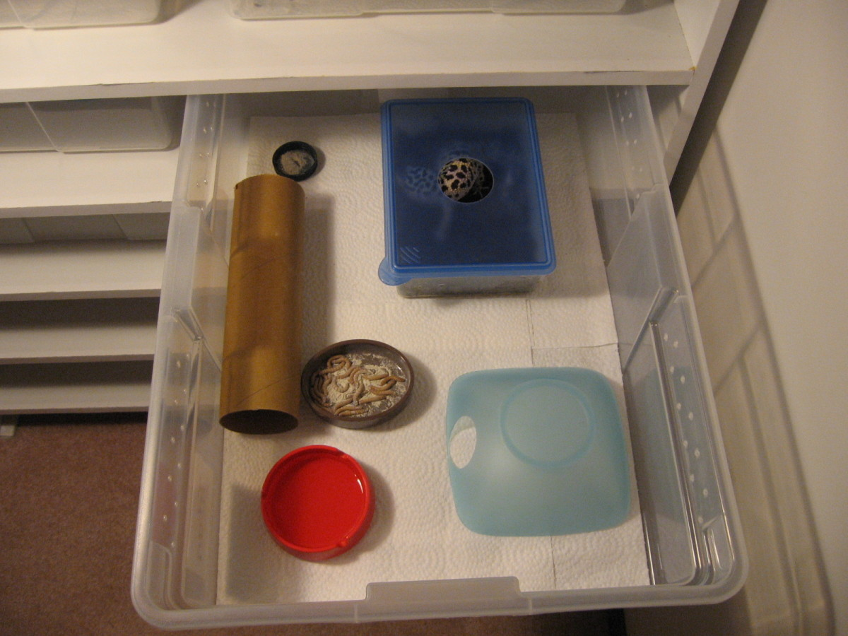 A simple tub setup.