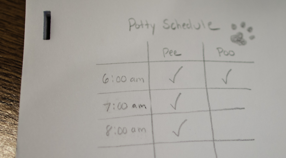 A written schedule will help during the potty training process.