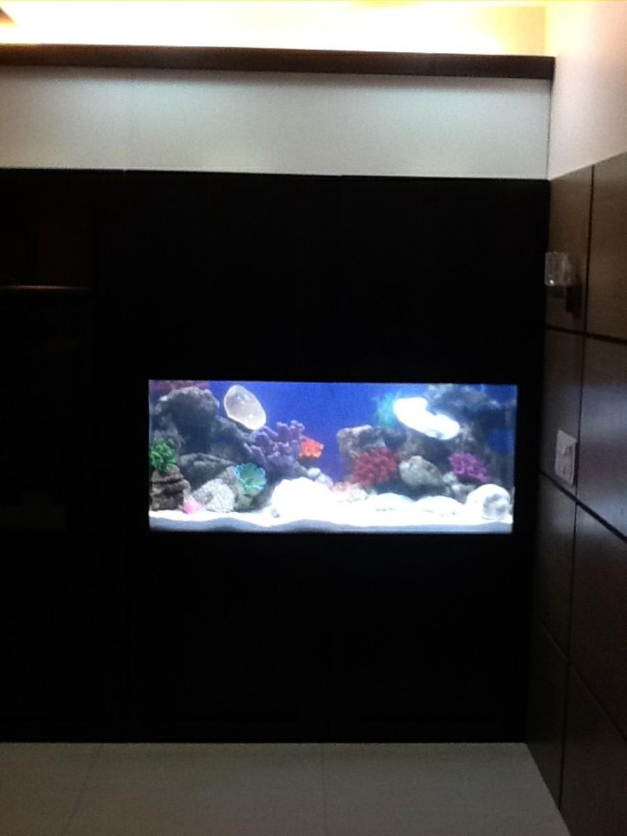 The aquarium in its cabinet.