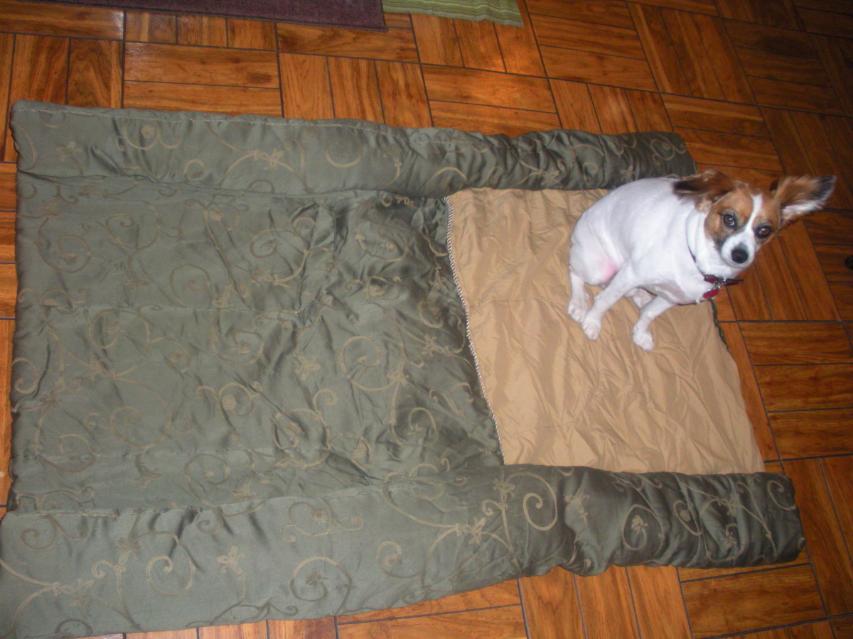 Steps 1 and 2 of Your DIY Dog Bed