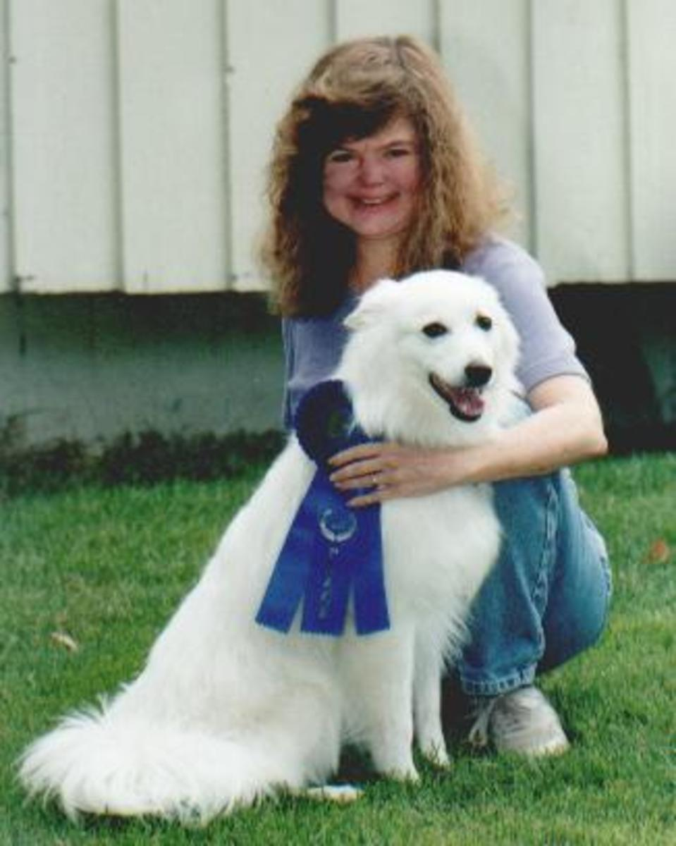 Doing daily dog socialization work allowed Laika to earn her first blue ribbon!