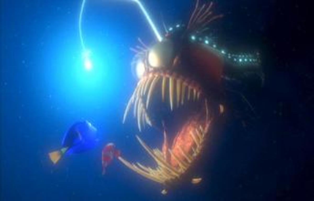 Deep sea fish such as this angler fish cannot survive on the surface or in aquariums because they will blow up due to the gas spaces contained in their bodies mixing with low pressure, while surface fish would be crushed in the deep sea.
