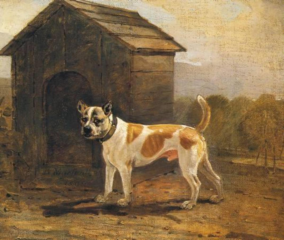 A painting of a bulldog from the early 1800's