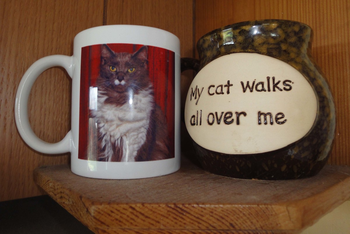 Personalised mugs of Greebo and Dippy.