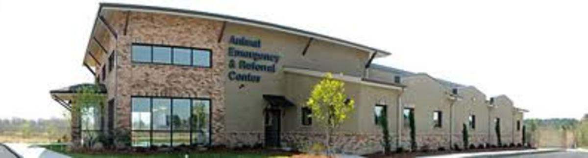 The Animal ER Hospital: A 15-minute Drive Away